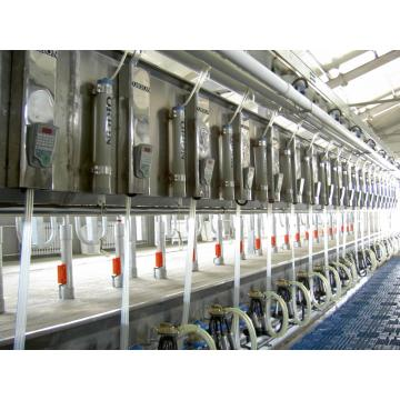 rotating cow milking parlor