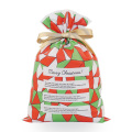 Geometric Patterns Green Red Plastic Drawstring Gift Bag