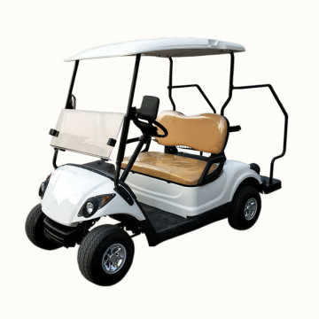 good price 2 seats cheap golf kart sale