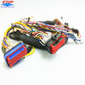 OEM Wire Harness Assy With Molex Sealed Connector