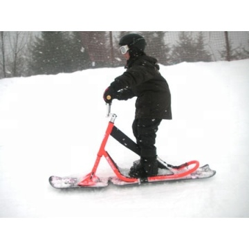 Custom Professional Kids Ski Snow Scooter