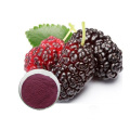 100% natural water soluble Mulberry fruit extract supplement