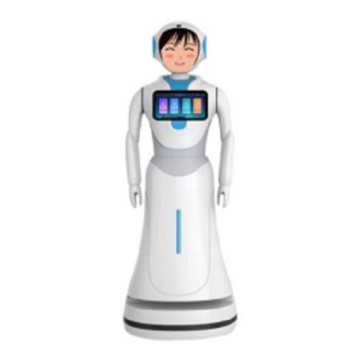 Supermarket and Shopping Mall Robots Interactive Talking
