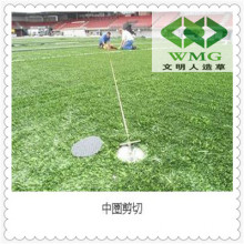 Mini Football Grass