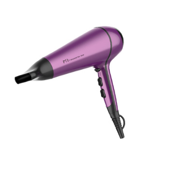 Hotel Professional Electric Hair Dryer