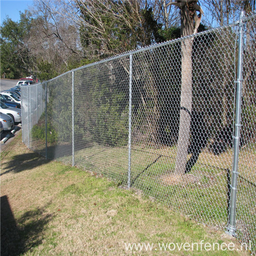 cheap and high-quality chain link fence(20years' factory)
