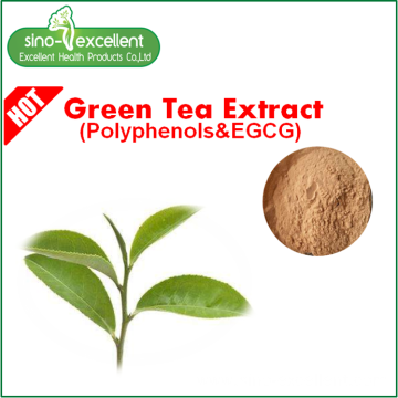 Tea polyphenols with low Caffeine