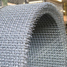 Stainless Steel Crimped Wire Netting