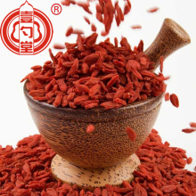 Bahan baku food grade goji berry food