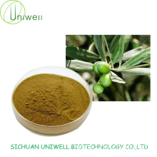 Olive Leaf Extract Oleuropein 10%-40% Powder