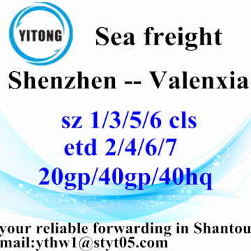 Shenzhen Professional Shipping Forwarder Agent to Valenxia