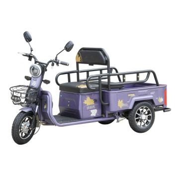 Small electric rickshaws with small cargo box
