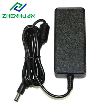 24V1A 24W Universal AC-DC Video Camera Power Adapter