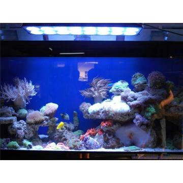 165w High Selling Aluminium Aquarium Light