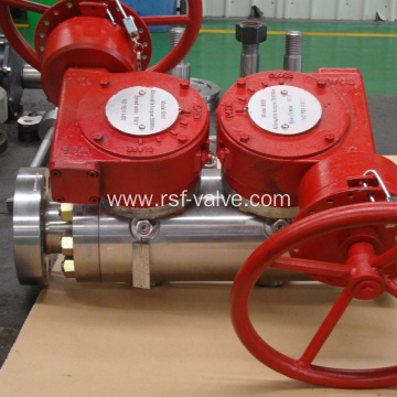 Trunnion Mounted DBB Ball Valve