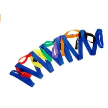Shocking Offer 100% Colorful Polyester Strap for Kids Group Walking