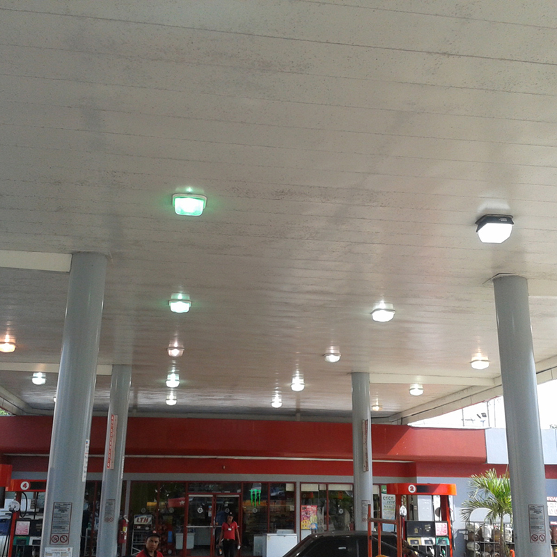 Garage Canopy Light