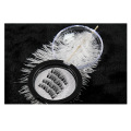 European American three magnets sharpen magnetic eyelashes