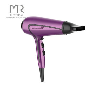 DC Motor High Speed Hair Dryer Professional