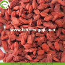 Best Quality Nutrition Dried Bio Goji Berries