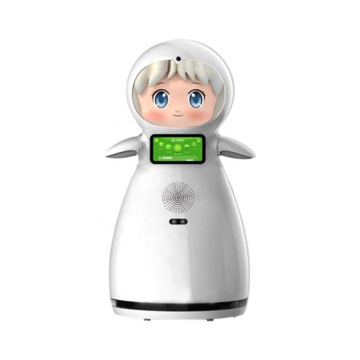 Learning Companion Robot For Kids