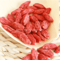 Sun Dried Goji Berry 350 Goji Berry