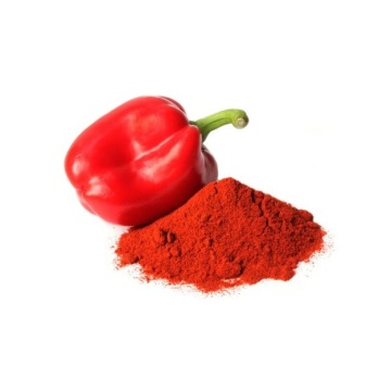 220ASTA Paprika Powder for Export