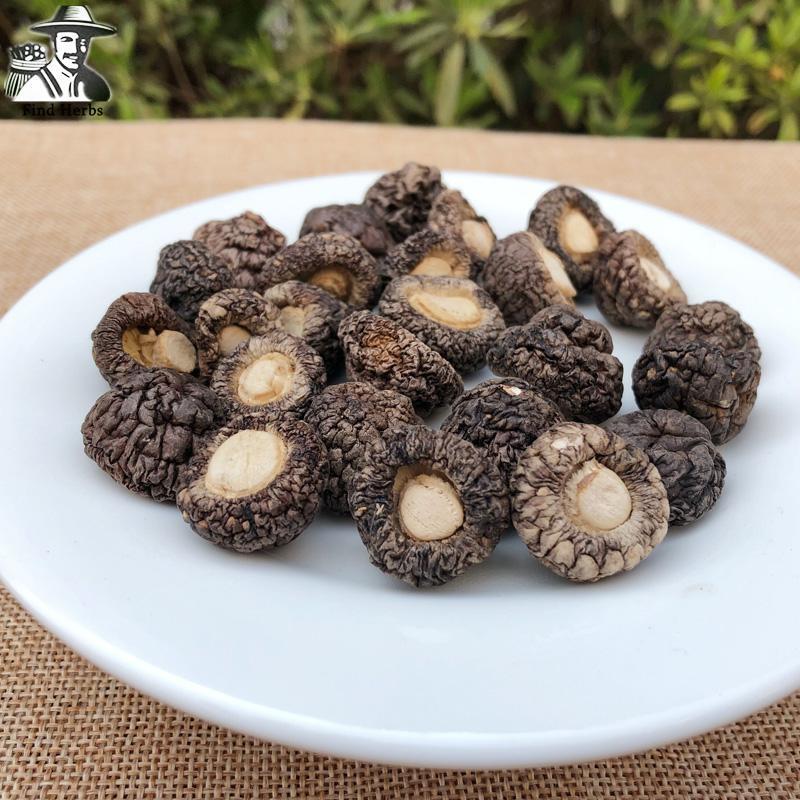 Lentinan Mushroom, Chinese Shiitake Mushroom, Xiang Gu, Jin Qian Gu