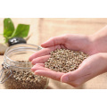 Hot Selling Organic Hemp Seeds