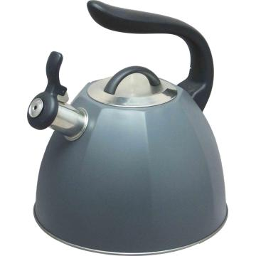 Stainess steel Painting tea pot