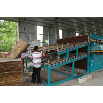 Wood Processing Veneer Dryer Machine