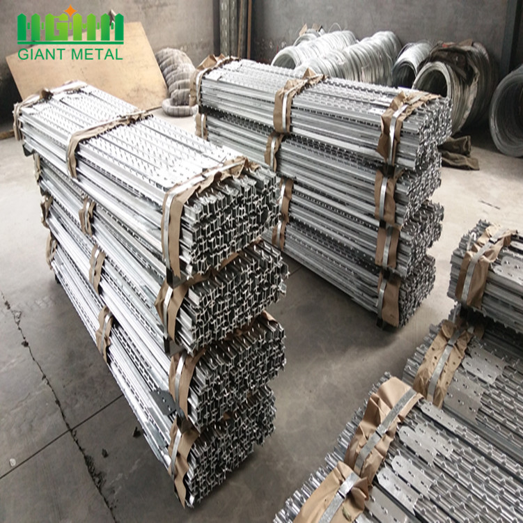 High Quality Galvanized Steel Fence T Post