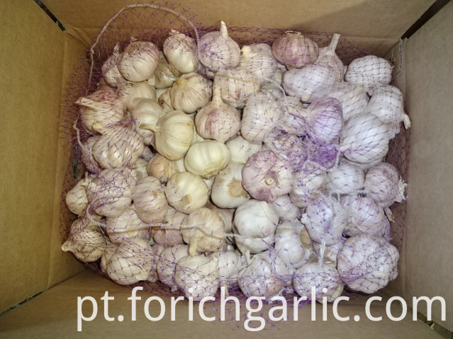Normal Garlic Size 5 0cm