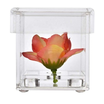 Clear Acrylic Flower Display Box Square Small