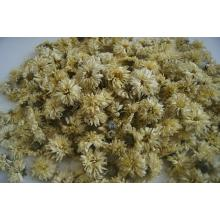 Natural Herbal Flower Tea Dried Chrysanthemum