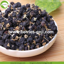 Factory Supply Dried Wild Black Goji Berry