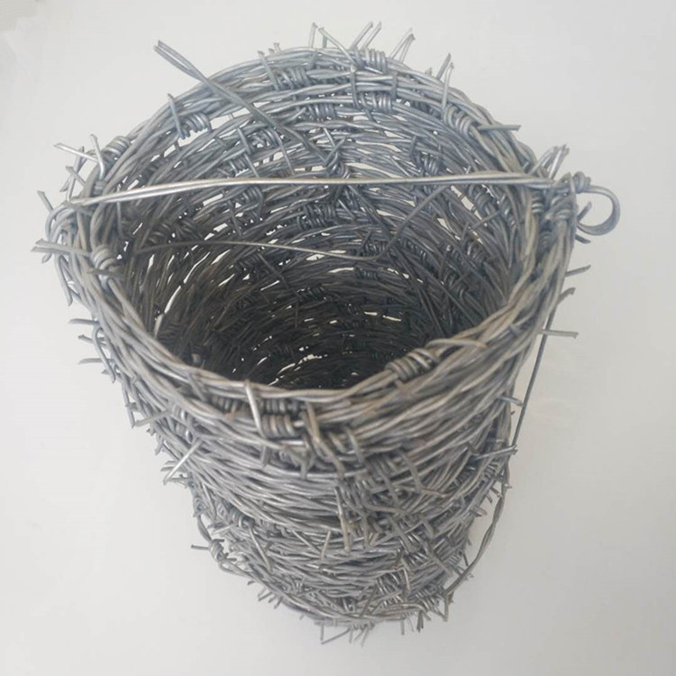 barbed wire p2
