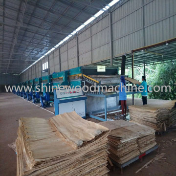 Automatic Veneer Drying Machine