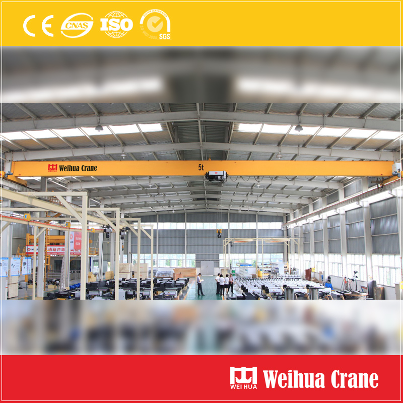Fem Single Girder Overhead Crane