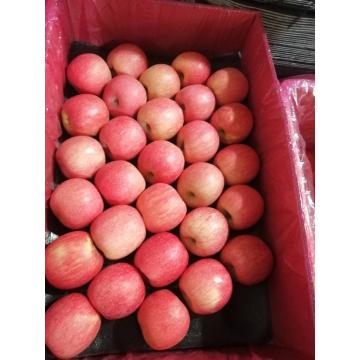 Good Color Pink Lady Fresh Apple