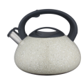 4.5L bodum tea kettle