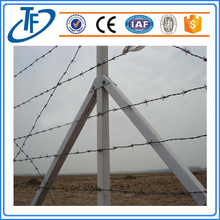 Stainless galvanized and PVC coated Barbed wire