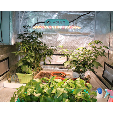 High Quality Dimmable Hydroponic LED Grow Light 1000w