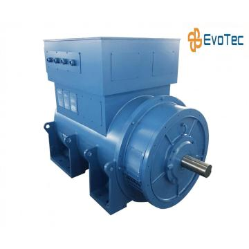 6300V Continuous Duty Generator