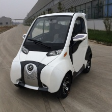 New Energy Car with Lithium Battery