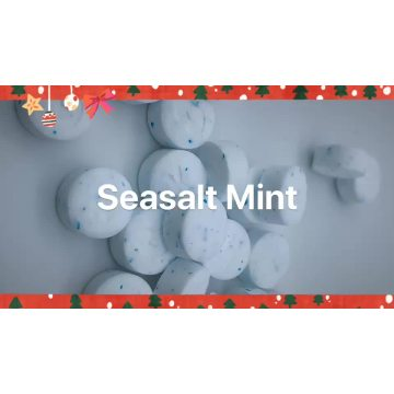 natural Stevia Sea-Salt mints Stevioside Stevia candy