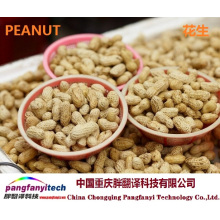Natural Nutritional Self-produced Tasty Aromatic Peanut