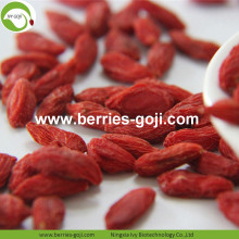 Factory Supply Dried Malaysia Goji Berries