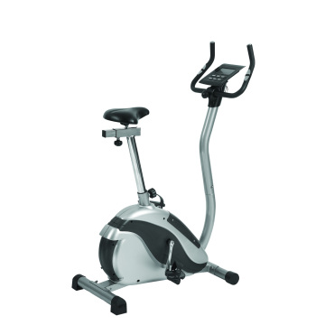 Magnetic motorized exercise bike