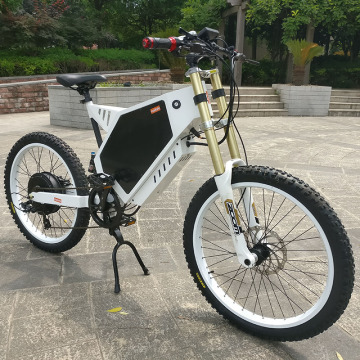 Custom CE Approved Fat Tire Electric Bike